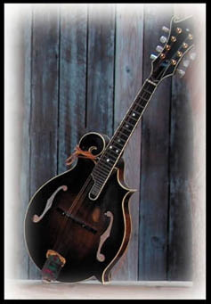 photo of mandolin